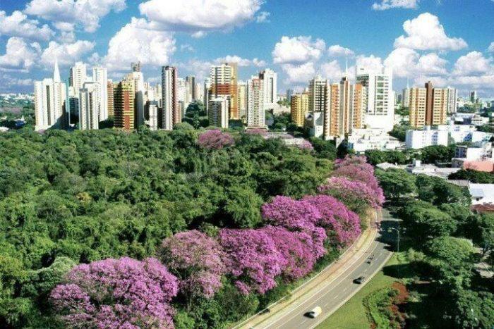 Foto aérea de Maringá, representando escritório de contabilidade em Maringá - Abertura Simples