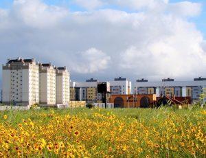 Foto da cidade de Pinhais, representando escritório de contabilidade em Pinhais - Abertura Simples