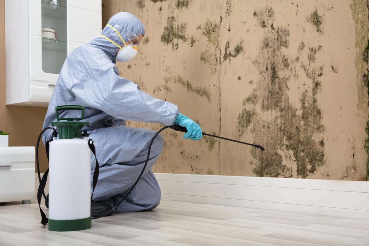 Foto de um homem dedetizando uma parede, representando como abrir uma dedetizadora