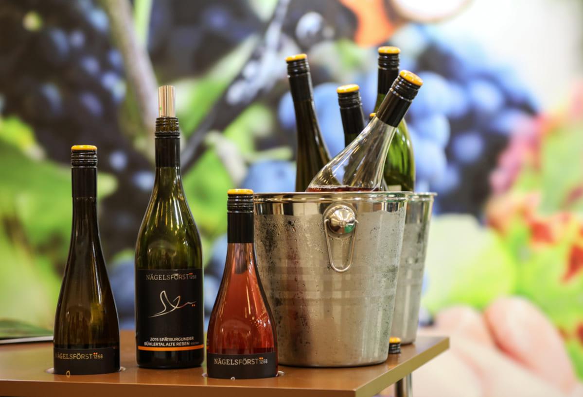 foto de garrafas de vinhos, representando como abrir uma distribuidora de bebidas