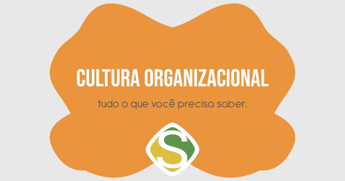 Imagem do infográfico sobre cultura organizacional para todos empreendedores implementarem nas suas empresas