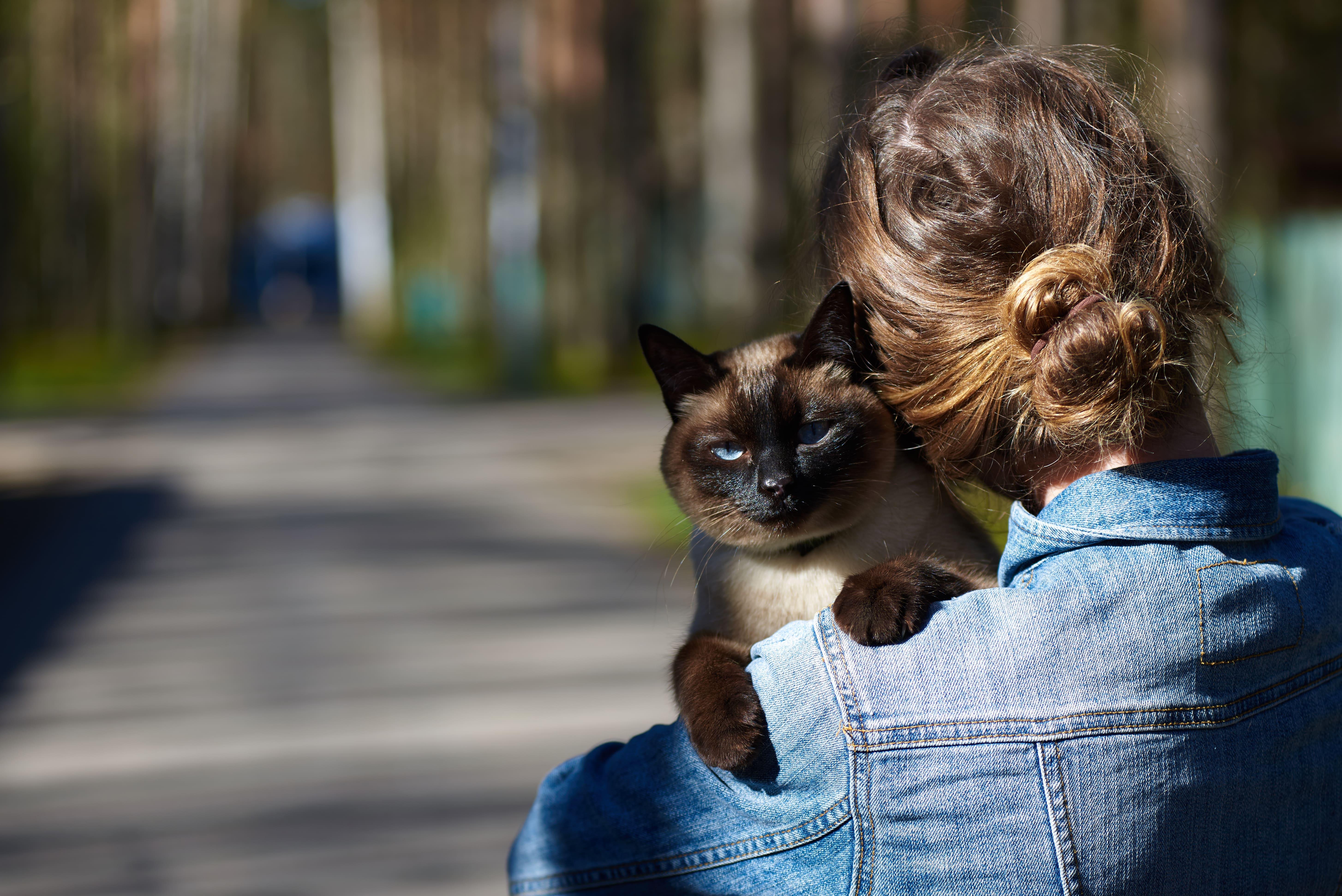 Imagem de uma mulher segurando o seu gato no colo para remeter ao empreendedor que deseja abrir uma loja de produtos veterinários