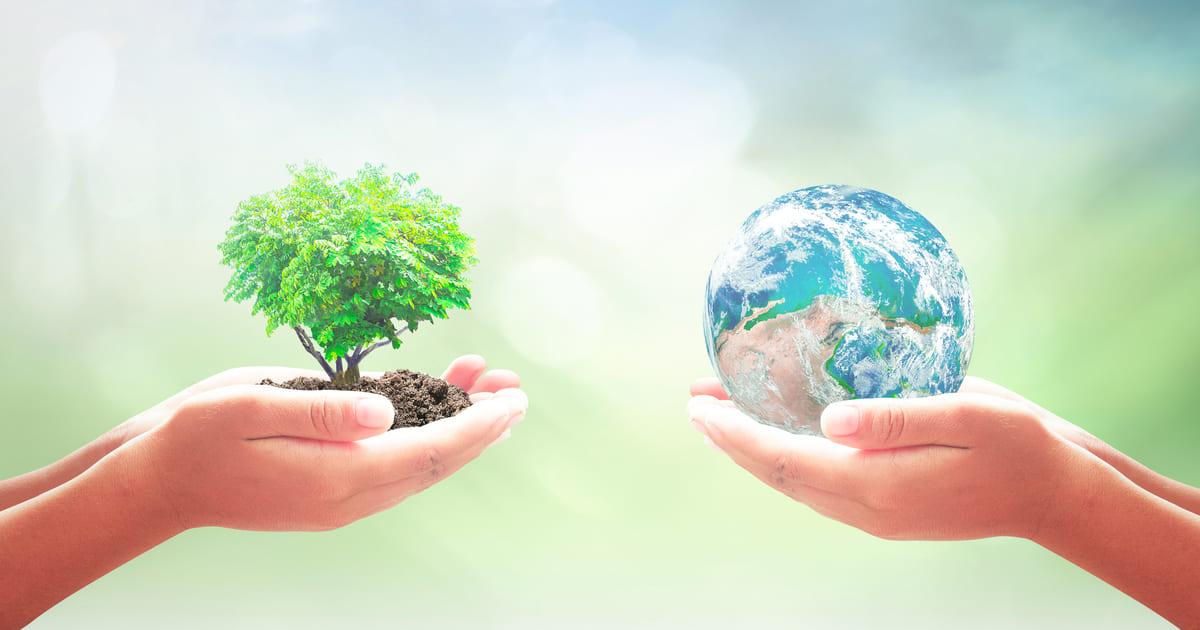 Imagem de duas mãos, uma segurando uma planta e a outra, um mundo, para remeter ao empreendedor que deseja saber como montar um serviço de consultoria ambiental